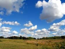Meadow in Alberta, Canada