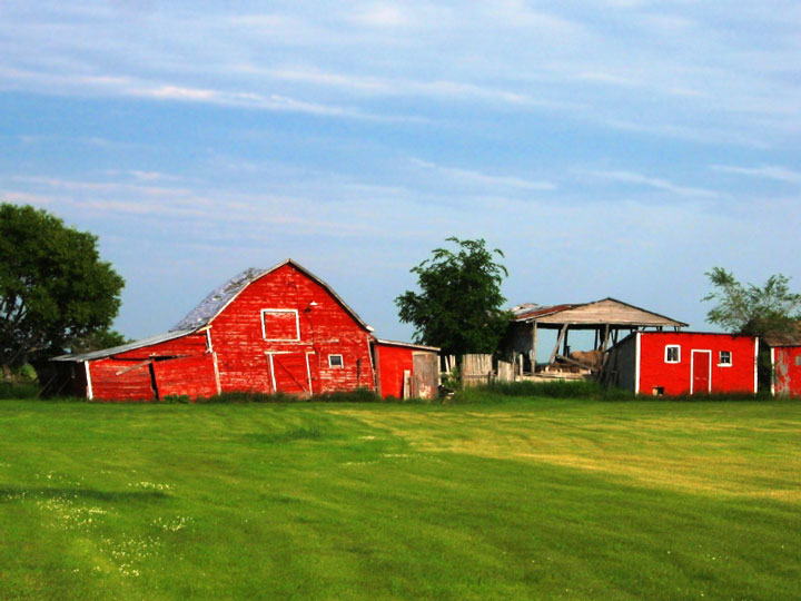 red barn and shed, Manitoba