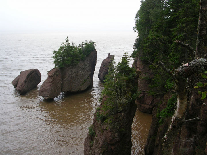 Flower Pot Rocks in Bay of Fundy