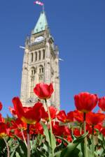 Ottawa's Peace Tower