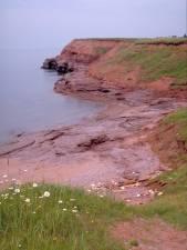Prince Edward Island shoreline
