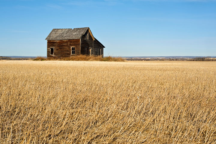 abandoned house in a Saskatchewan wheat field