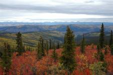 Landscape, Top of the World Highway, Yukon